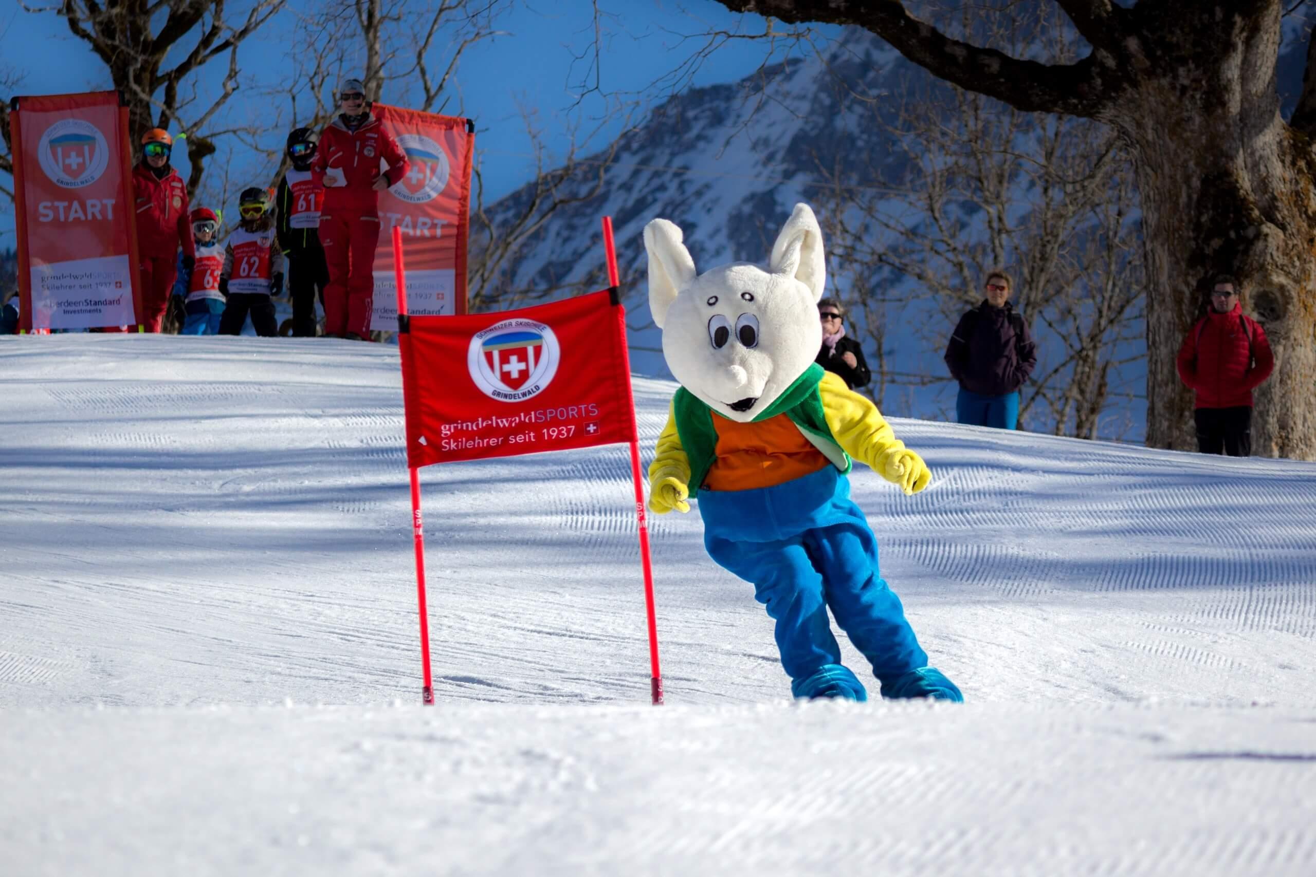 grindelwald-skischule-winter-abfahrt