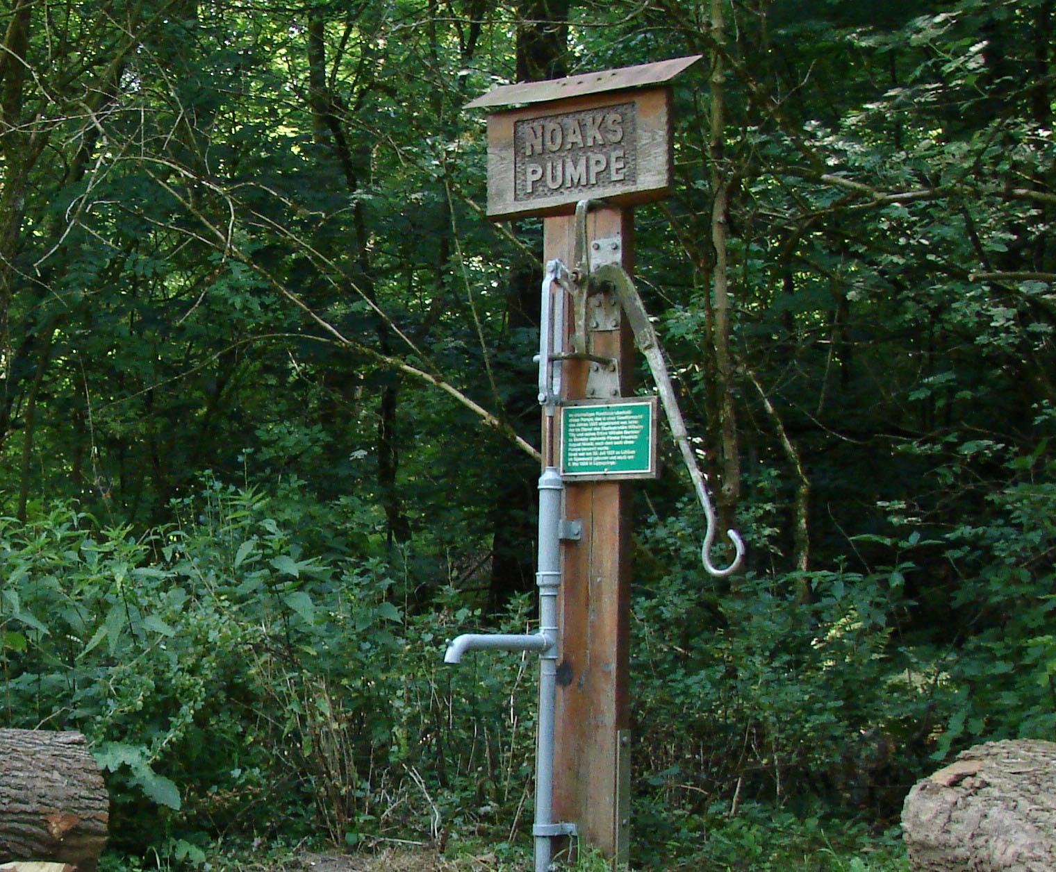 Noaks Pumpe Lippspringer Wald