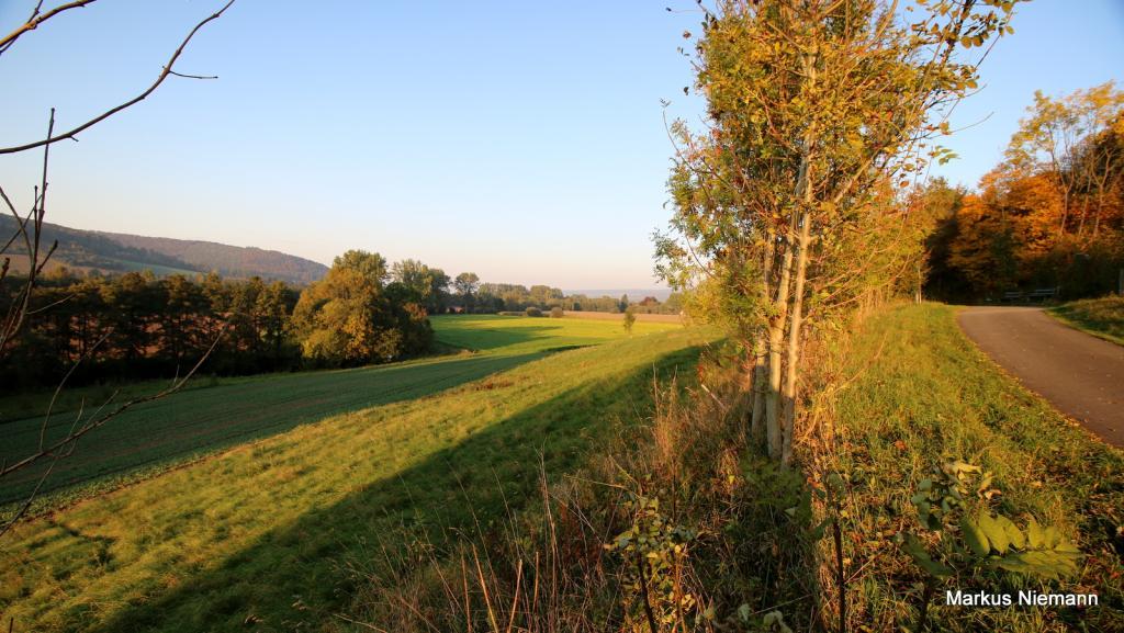 Weserhöhen_Nethetal_zwischen_Amelunxen_und_Ottbergen