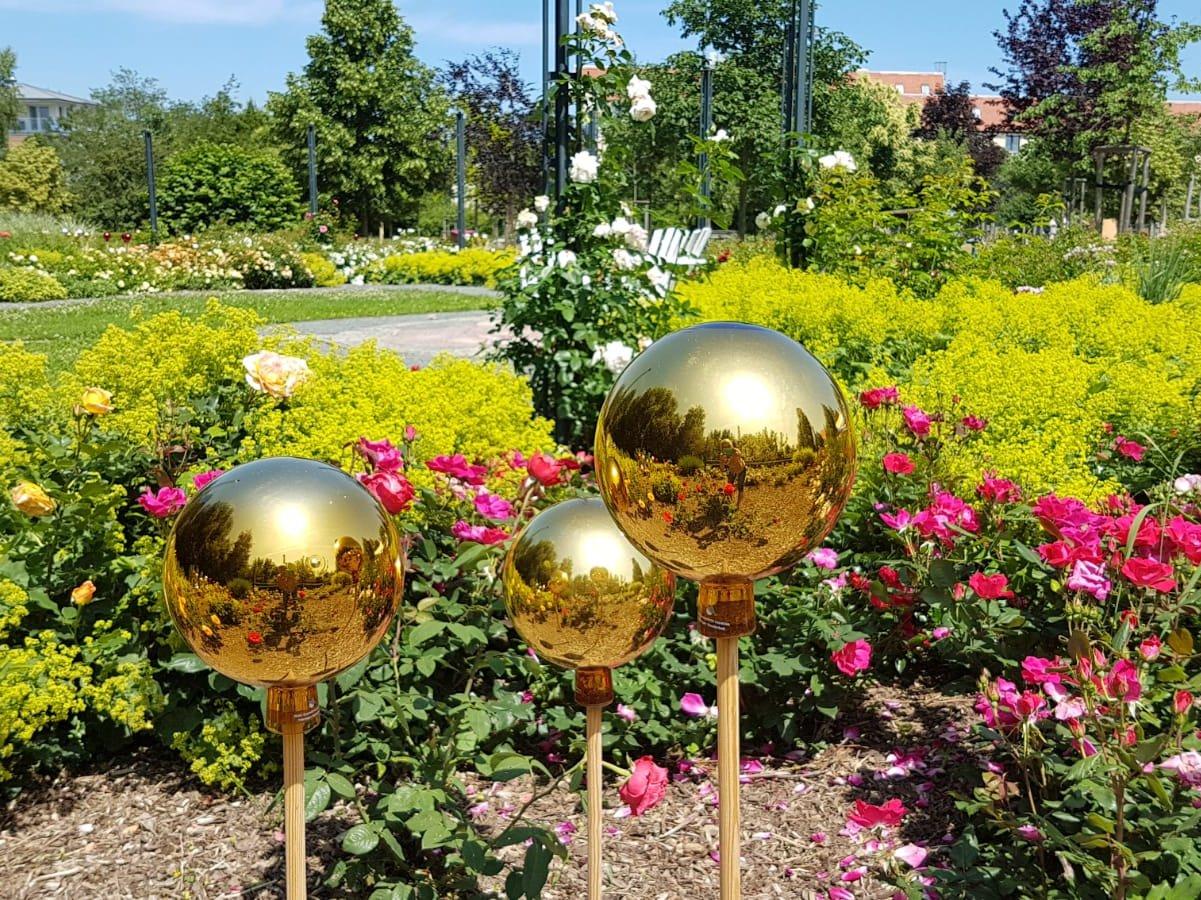 Ausblick auf den Rosengarten des Bürgerparks