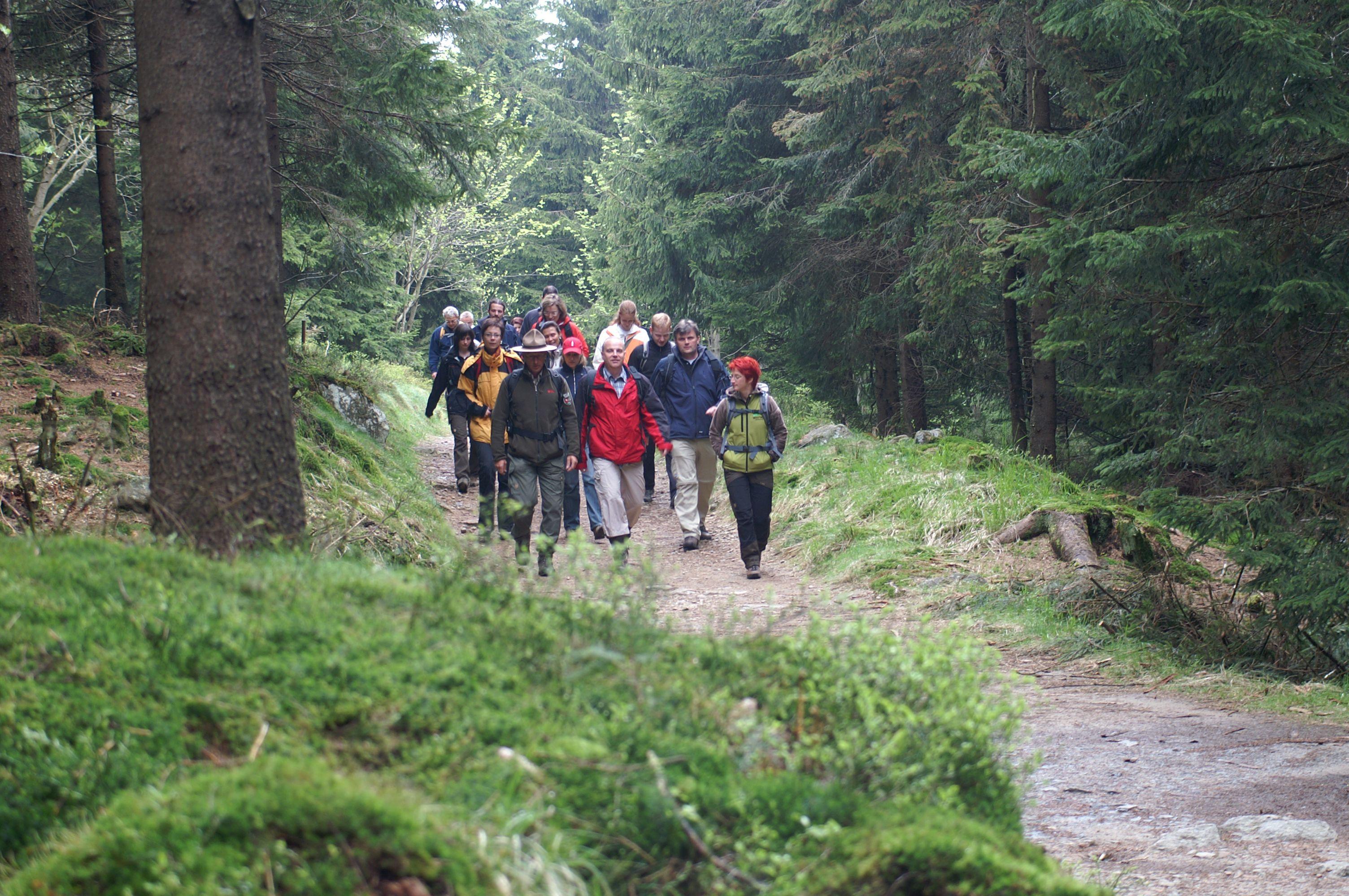 Wanderung mit Ranger auf Harzer-Hexen-Stieg