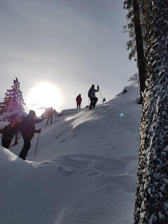 Schneeschuhwandern Harz Vital & Aktiv