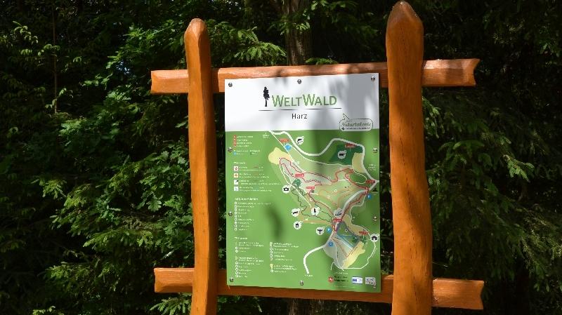 Infotafel im Weltwald Bad Grund