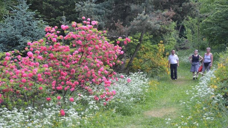 Besucher im Weltwald Bad Grund