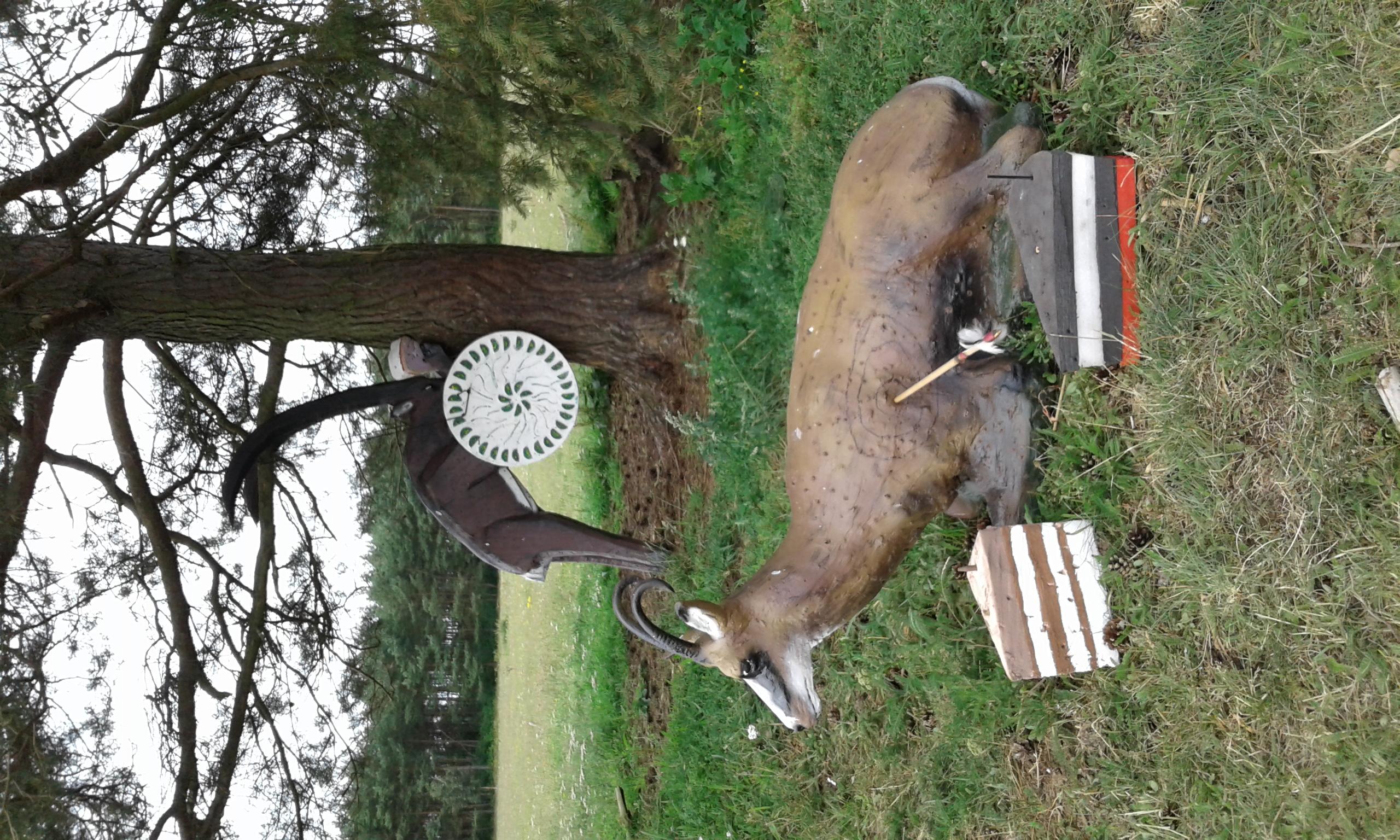 Tiere im Bogenschießparcours