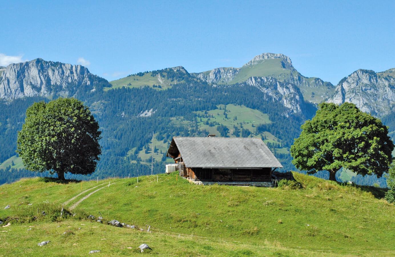 Alp Tschuggen im Hochsommer