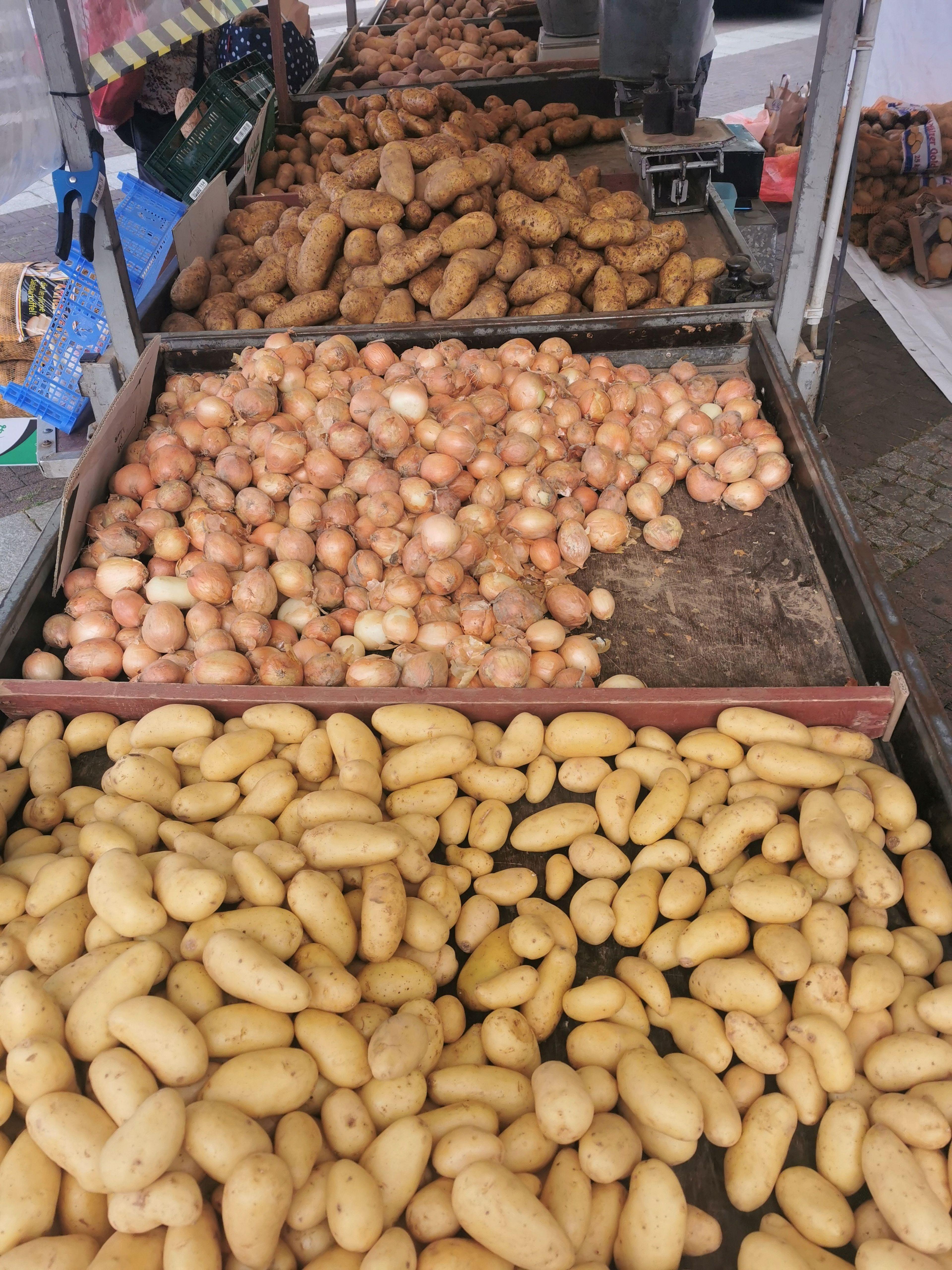 wochenmarkt-kartoffeln