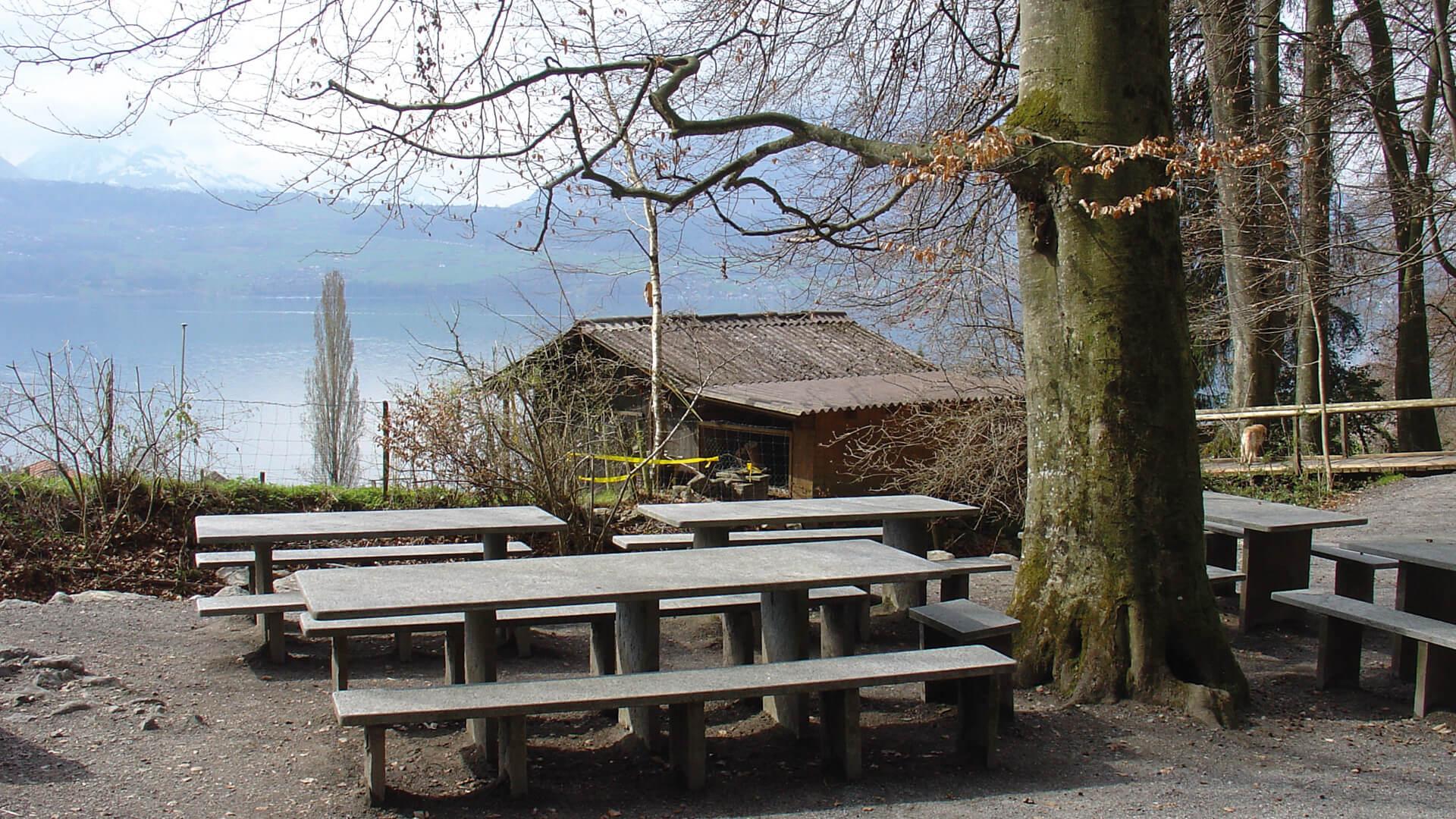 merligen-picknickplatz-opeten-aussenplaetze-fruehling