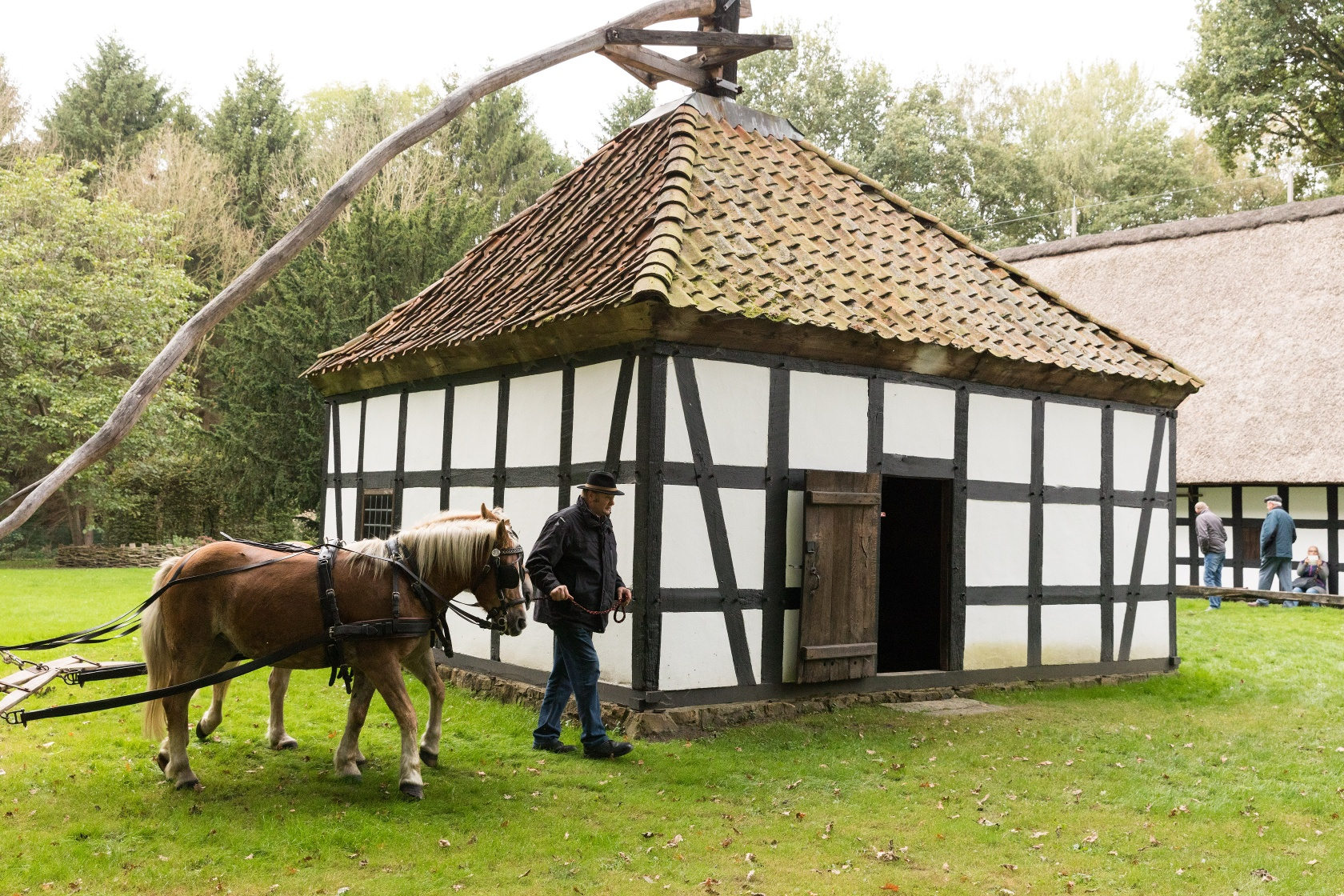 Rossmühle auf dem Museumshof in Betrieb