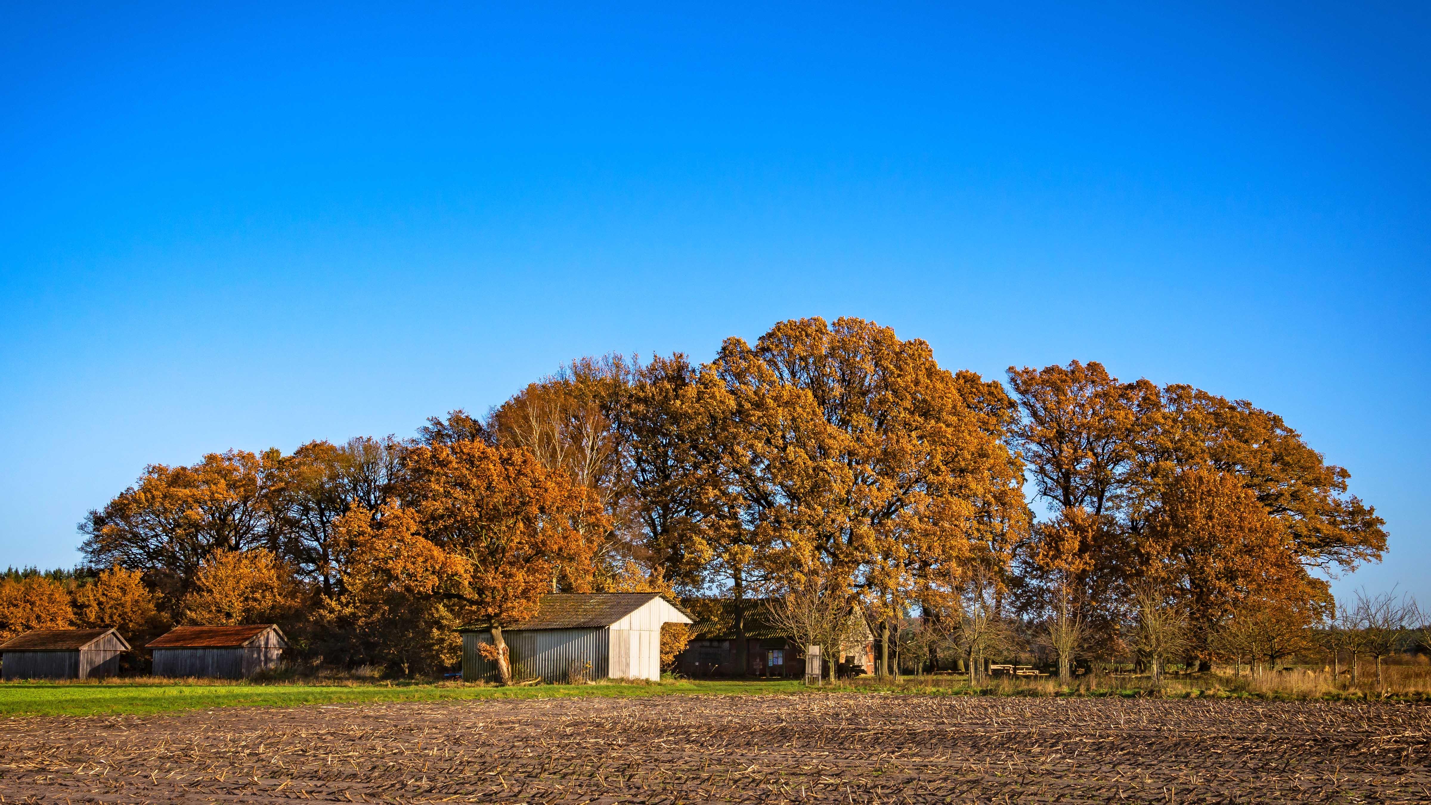 Der Schafstall Unterstedt im bunten Herbstkleid
