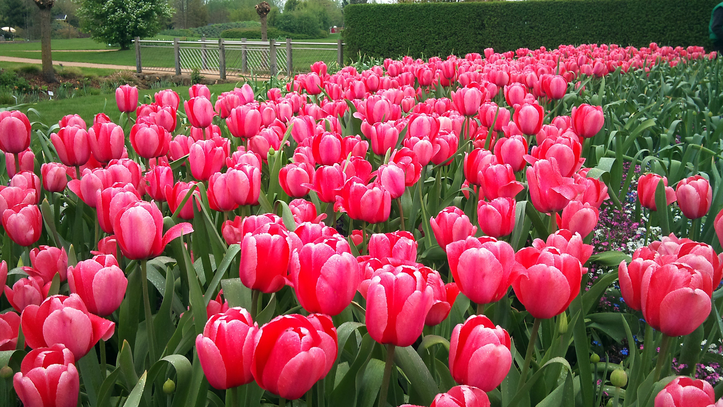 Saisonbeginn im Park der Gärten