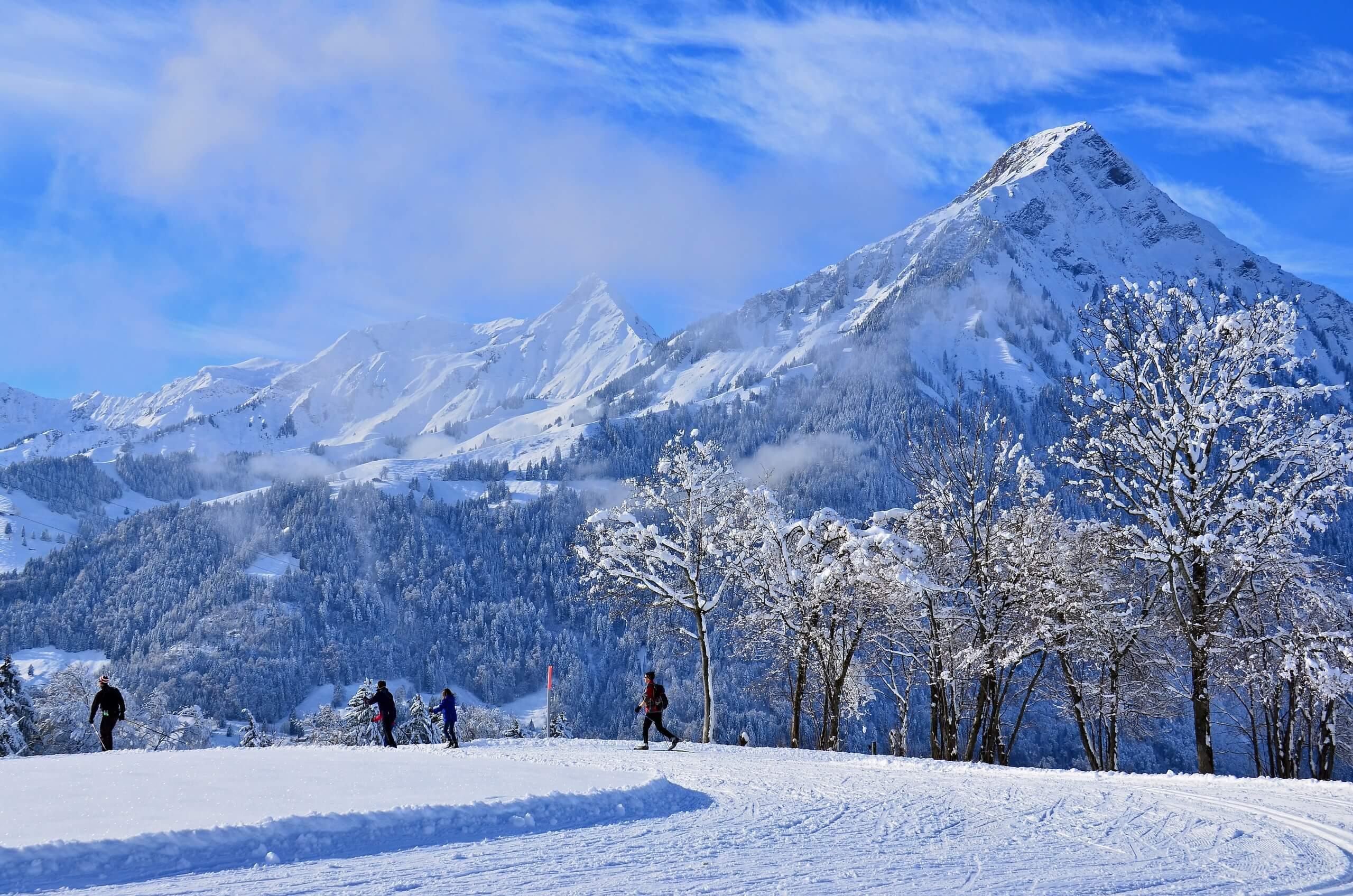 aeschi-langlauf-loipe-winter-panorama