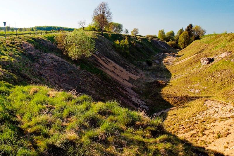 Erlesene Natur: Die Bleikuhlen bei Blankenrode