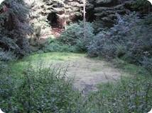 `Weringer Pohl` Lippspringer Wald