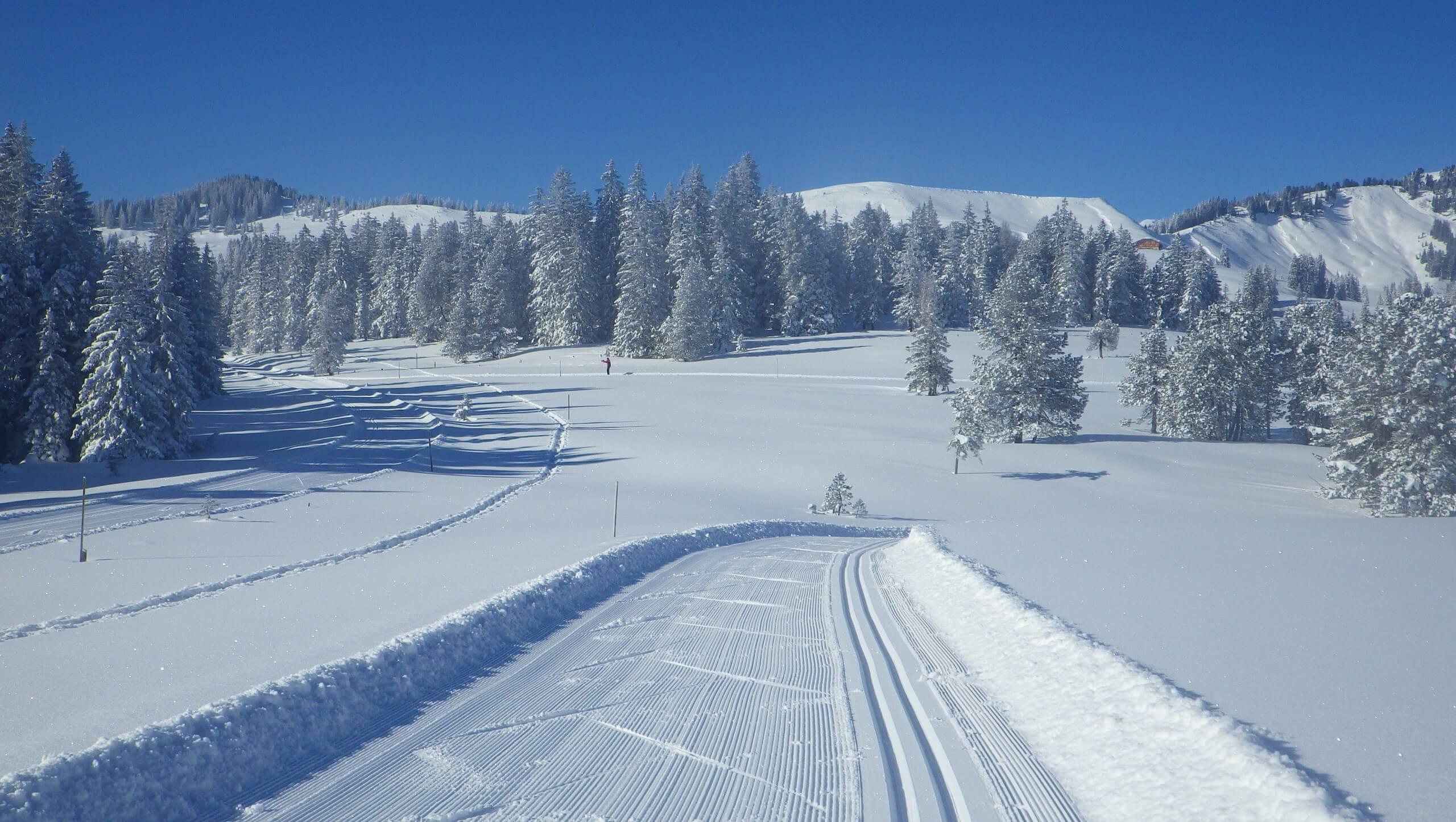 habkern-lombachalp-winter-langlauf-alplandschaft