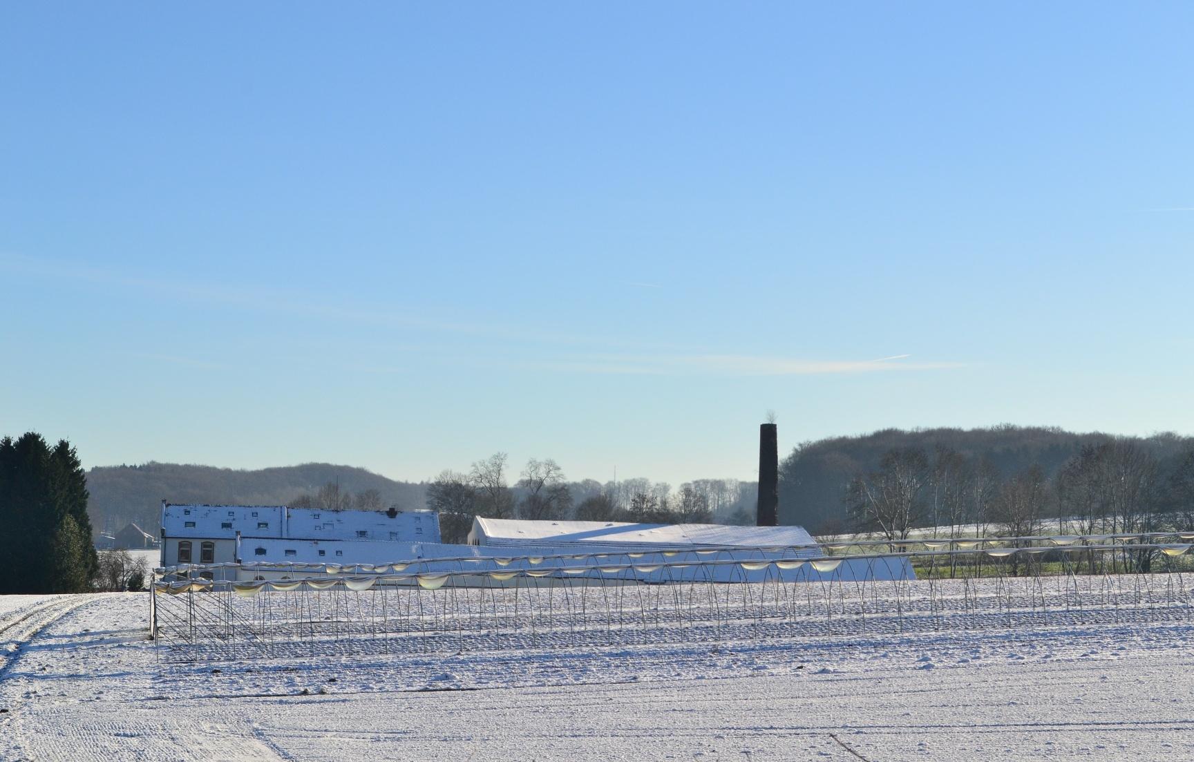 Blick auf die ehemalige Knochenleimfabrik