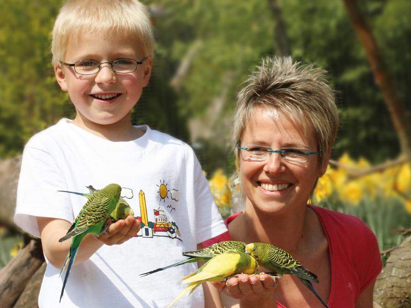 Vogelpark in Heiligenkirchen