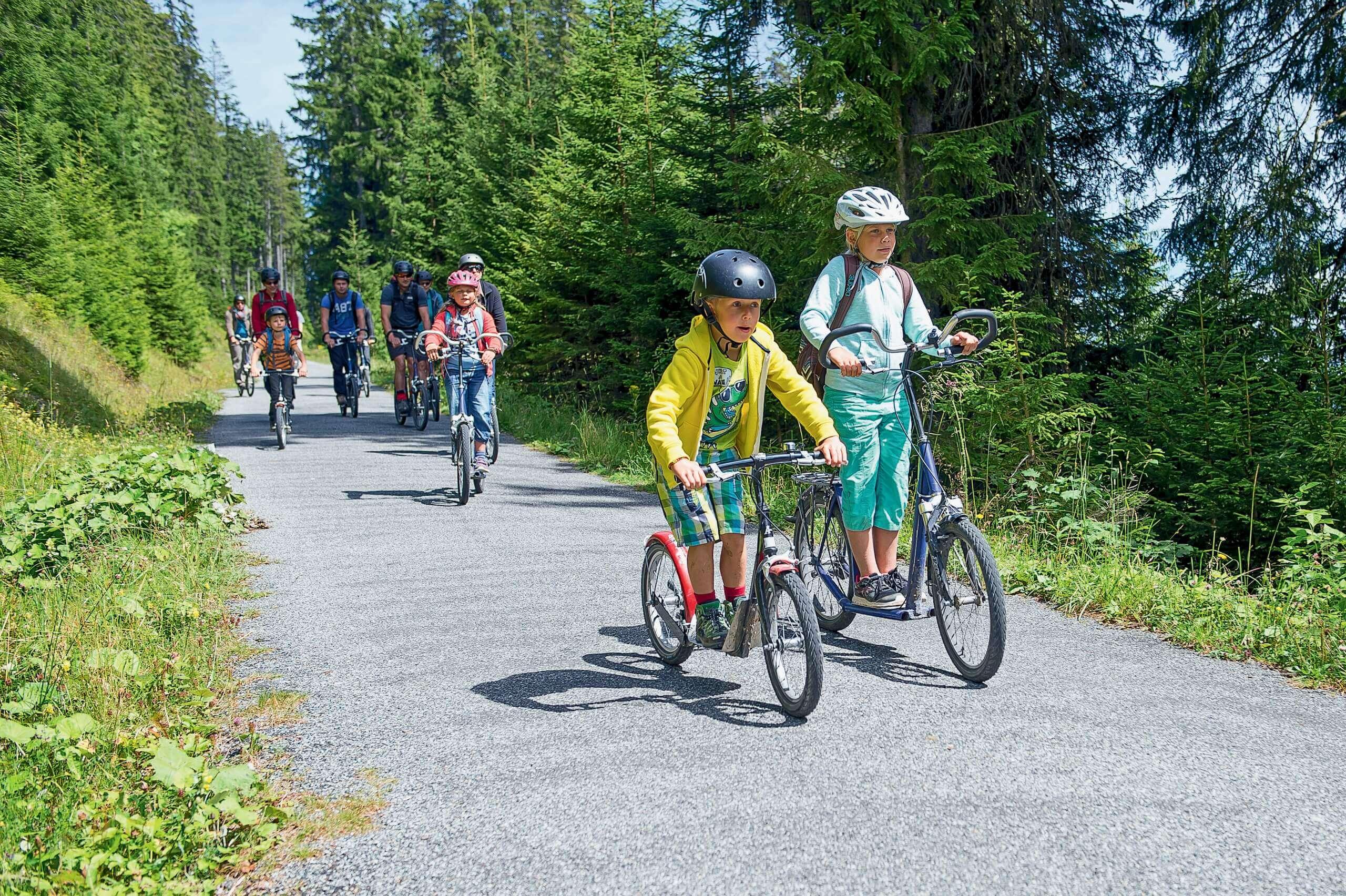 niederhorn-trotti-bike-sommer-abfahrt-gruppe-familie-spass