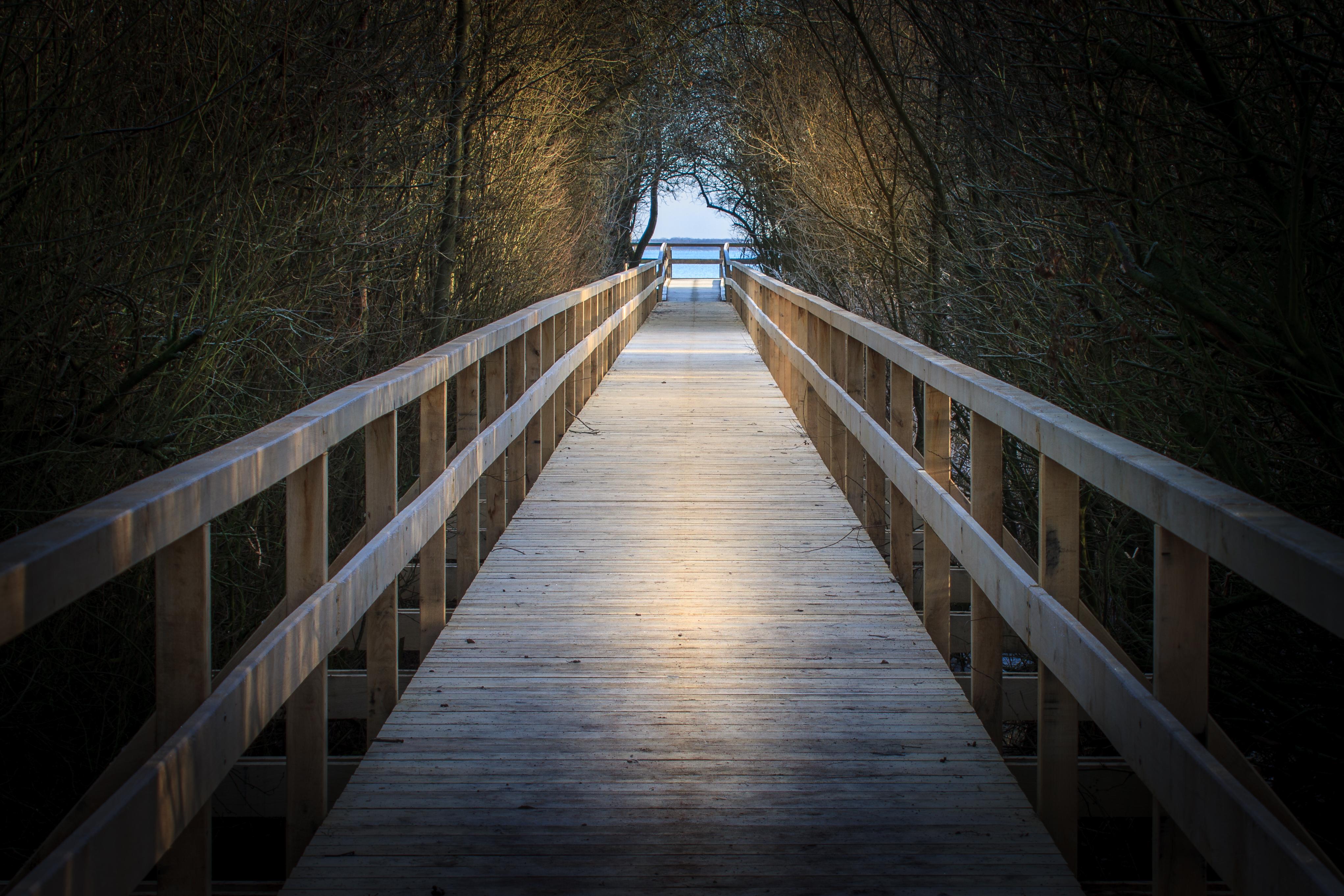 Weg zum Aussichtsturm Steinhuder Meer
