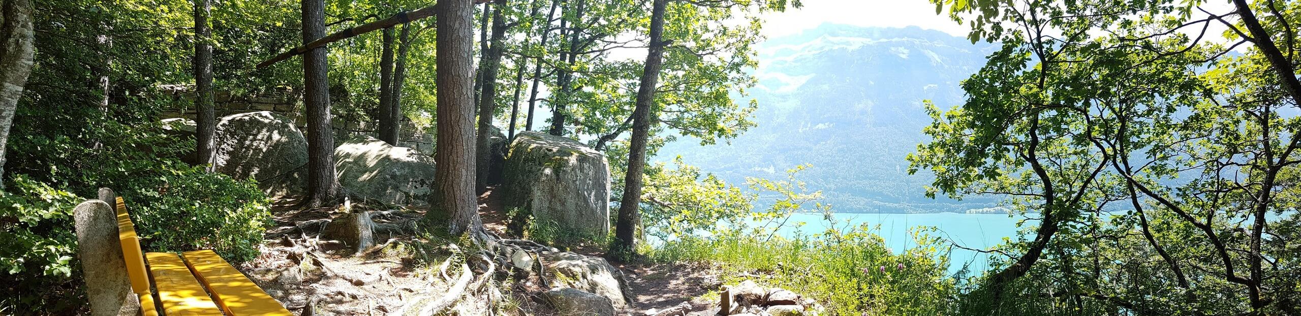 ringgenberg-ruine-schadburg-brienzersee-aussicht-sommer
