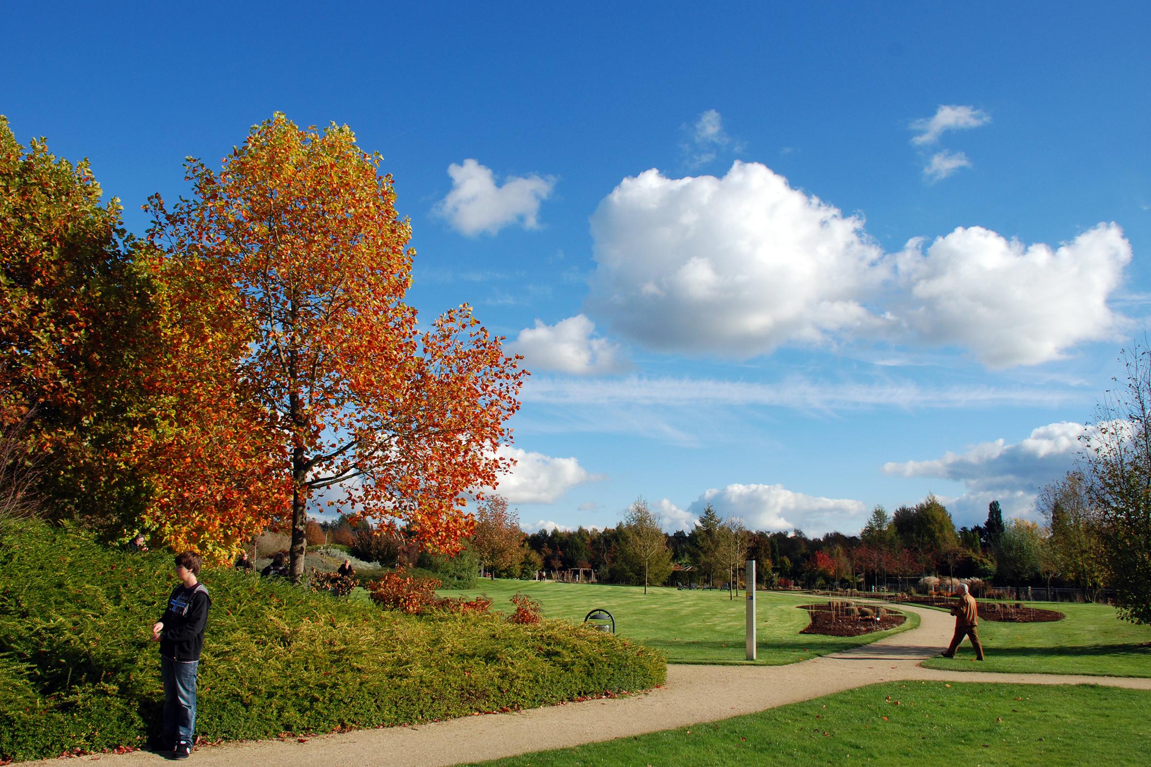 Sonderöffnung: Herbstimpressionen im Park