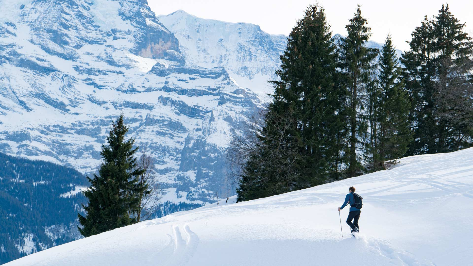 schneeschuh-outdoor-active-schnee-spass-natur-winter-schneeschuhlaeufer