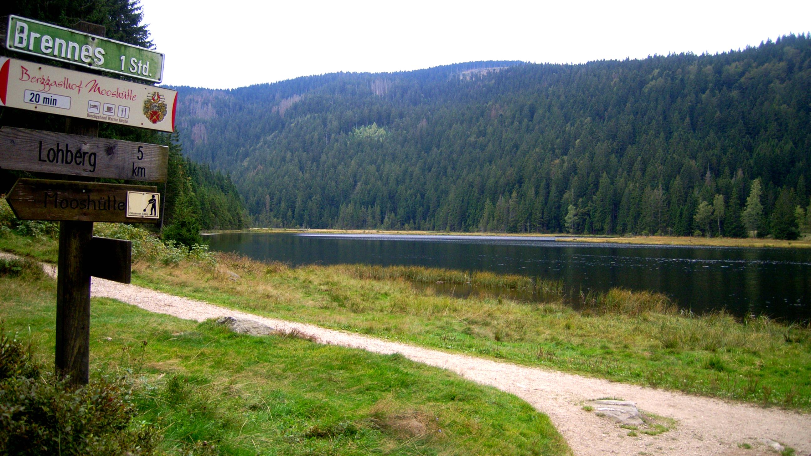 Gläserner Steig am Kleinen Arbersee