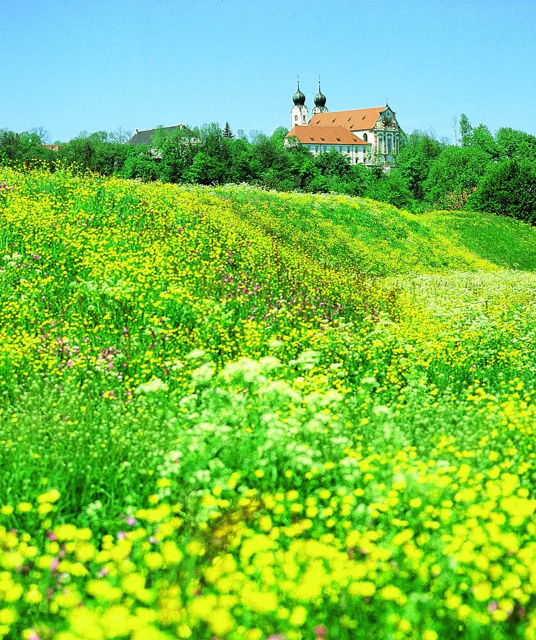 Wandern im Chiemgau, Seebruck, Von Kloster zu Kolster_2