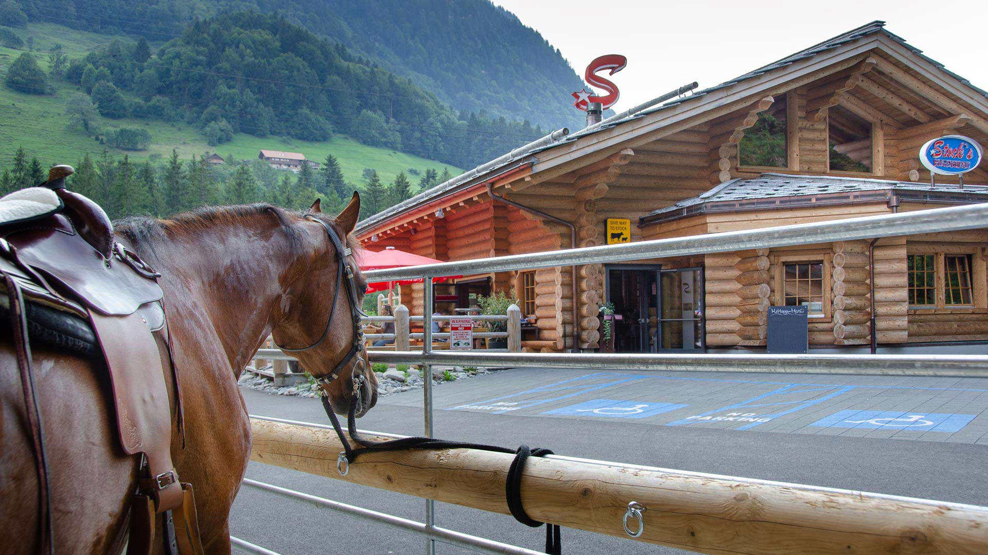 stocks-muelenen-aussen-pferd