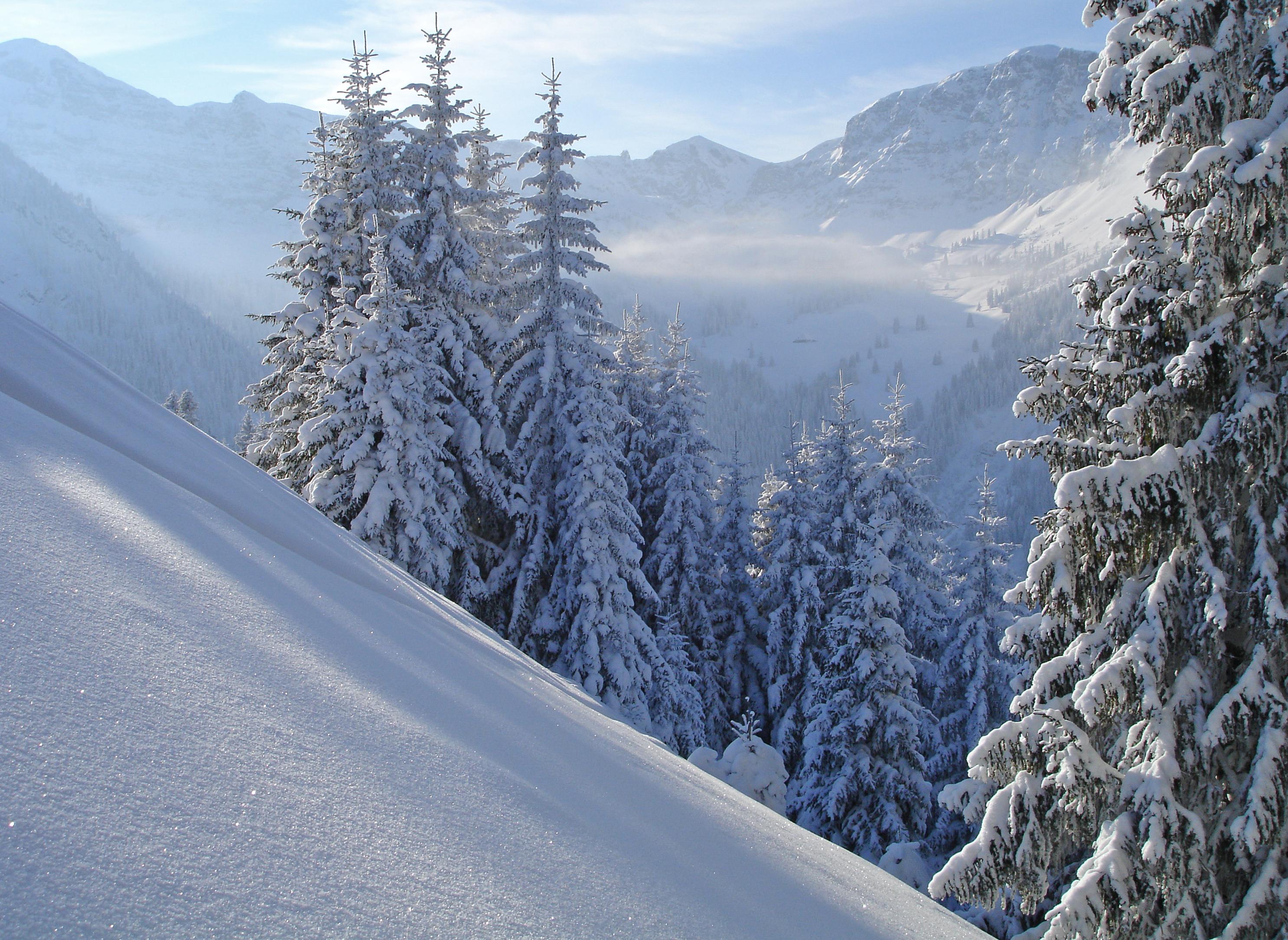 Zauberhafte Winterlandschaft im Naturpark Diemtigtal