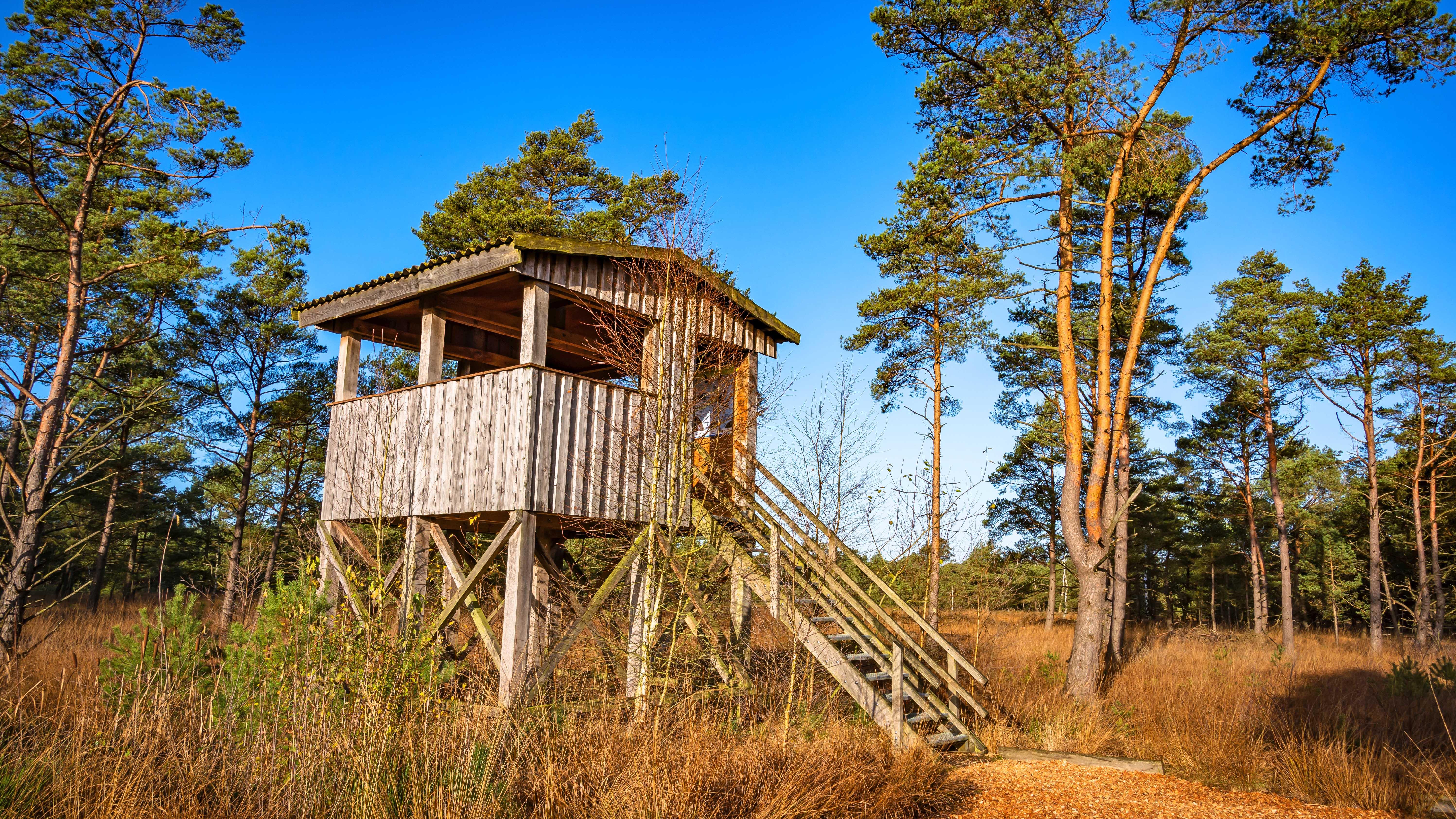 Der Aussichtsturm ... auch als Rastpaltz oder Schutzhütte nutzbar