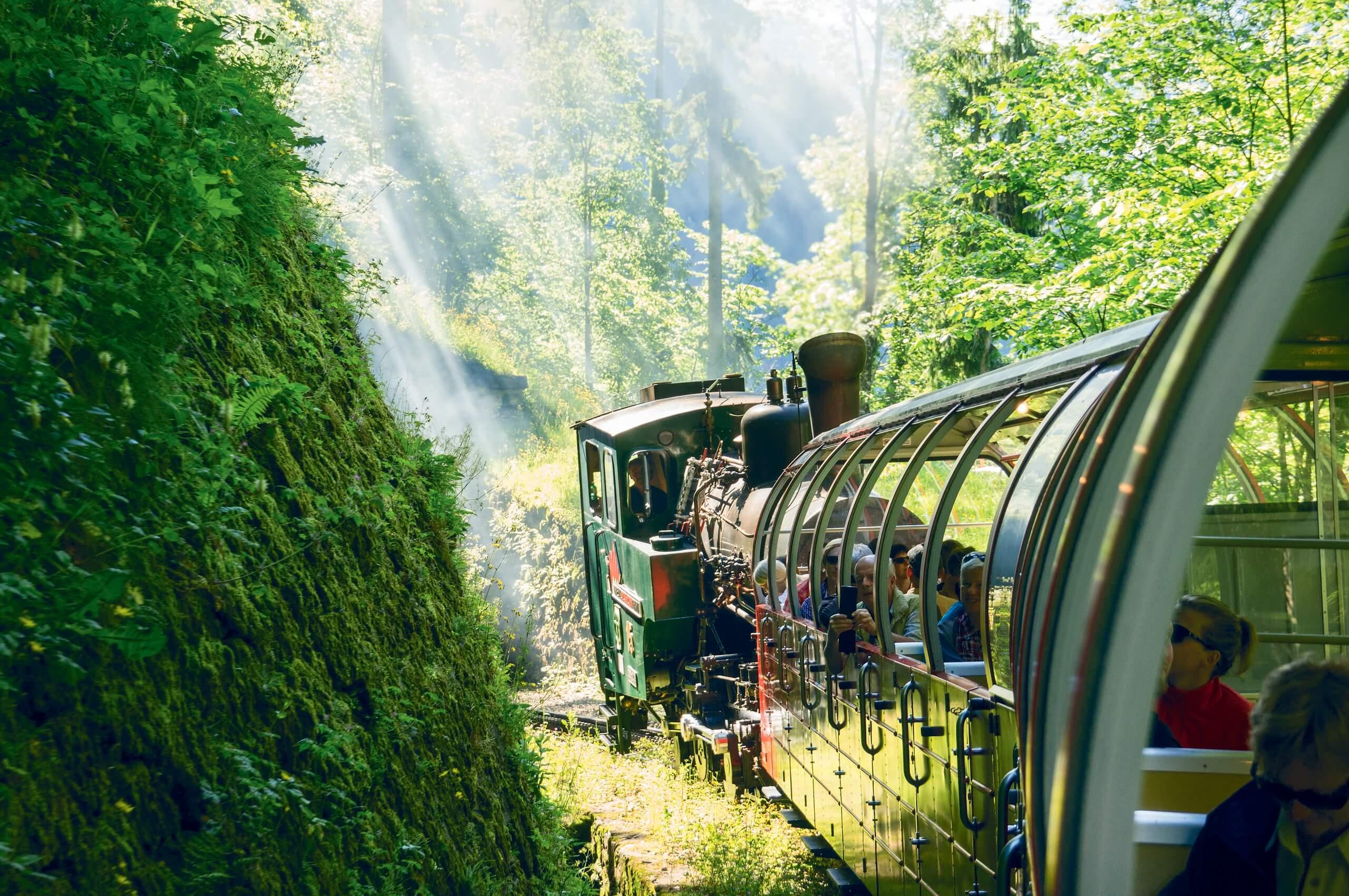 brienzer-rothornbahn-bergbahn-dampfbahn-sommer