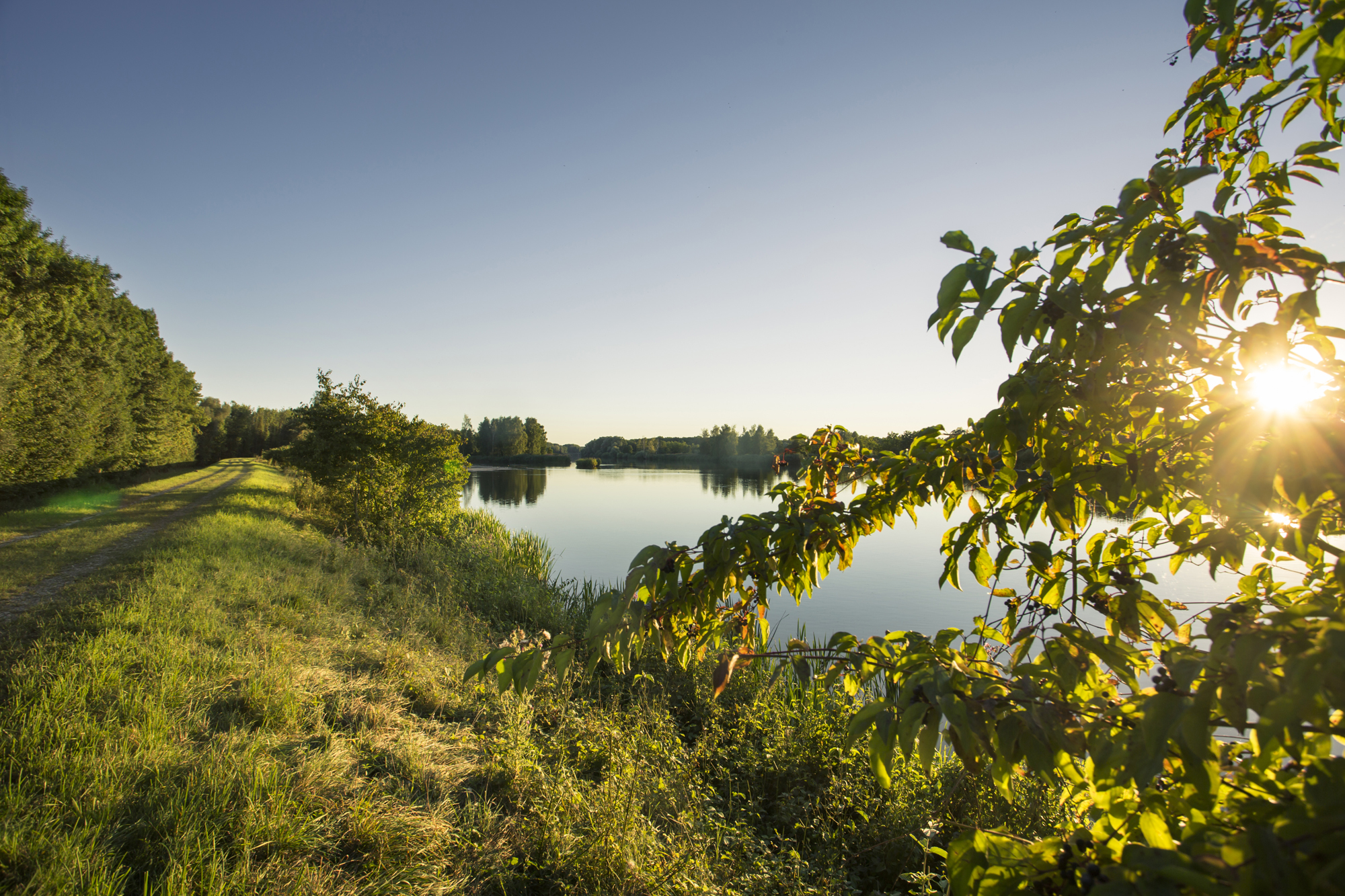 Donau bei Blindheim
