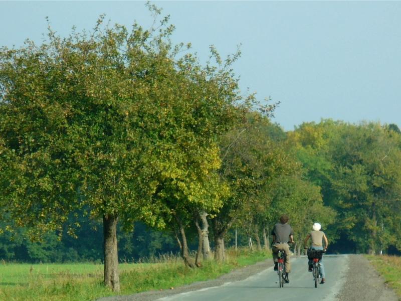 Radfahrer zwischen Elsen und Bentfeld