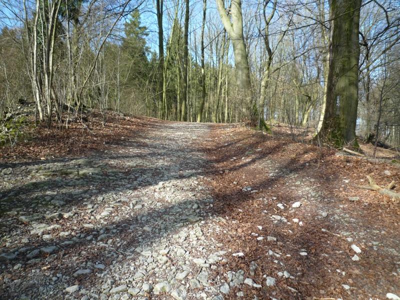 Weg vom Hermannsdenkmal zum Vogelpark