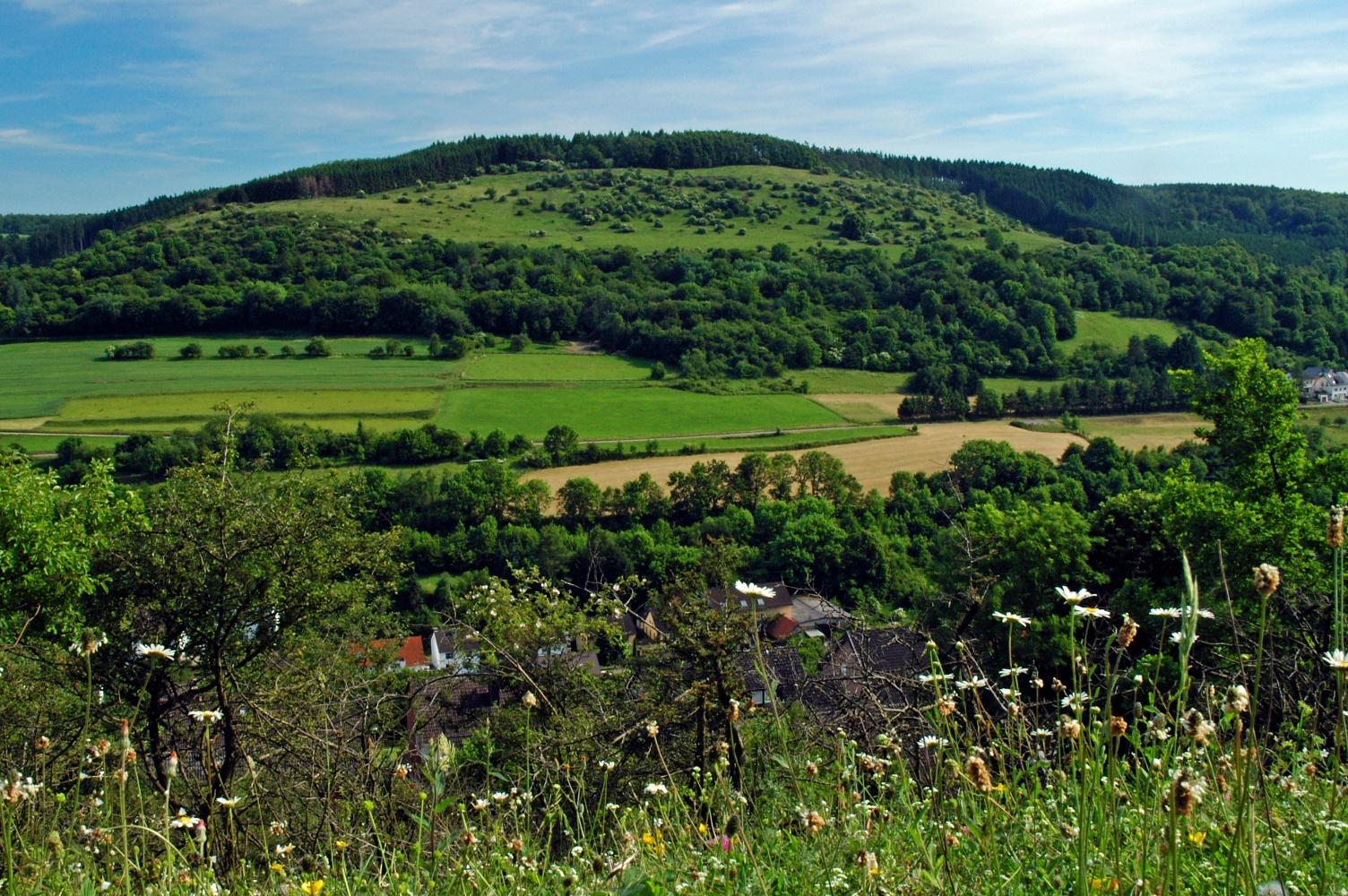 Blick auf den Krähenberg