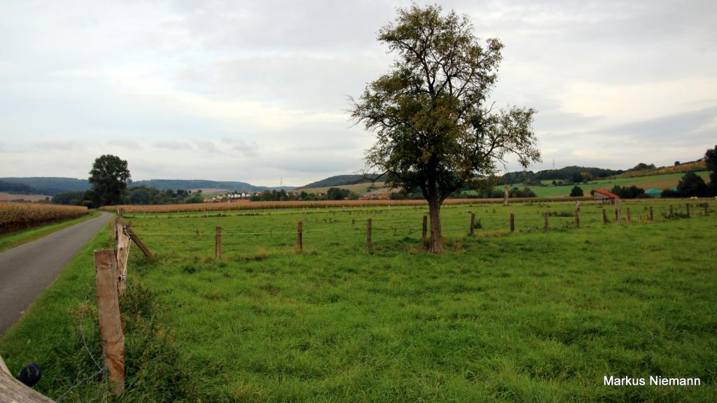 Weserhöhen_Blick_ins_Nethetal_vor_Hembsen