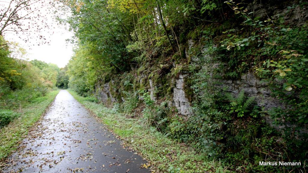 Weserhöhen_Beverradweg_auf_alter_Bahnstrecke_Dalhausen