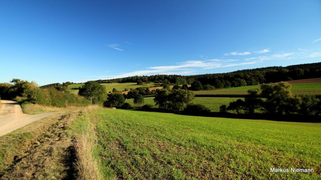 Weserhöhen_Blick_ins_Springbachtal