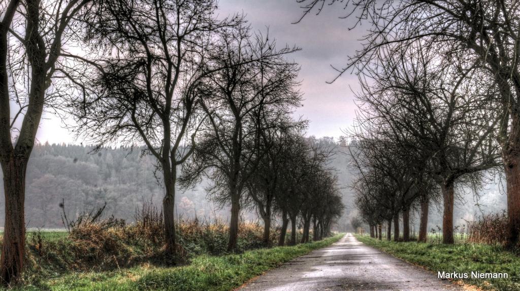 Weserhöhen Landfahrt