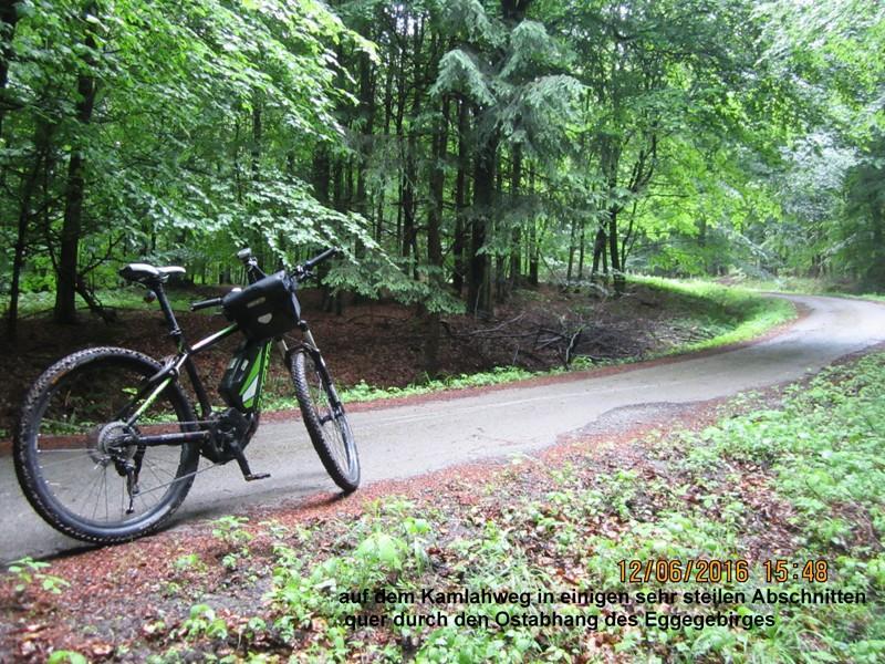 Steiler Forstweg am Eggeosthang