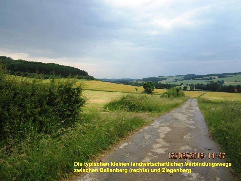 Wirtschaftswege zwischen Bellenberg und Ziegenberg