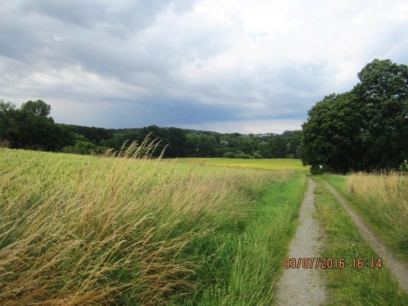 auf kleinen Wegen durch das Naptetal und hinauf nach Bad Meinberg