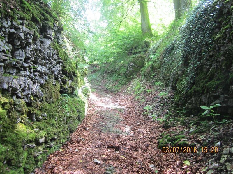 Historischer Hohlweg, künstlich angelegte alte Wegverbindung von West nach Ost über den Teutoburger Wald