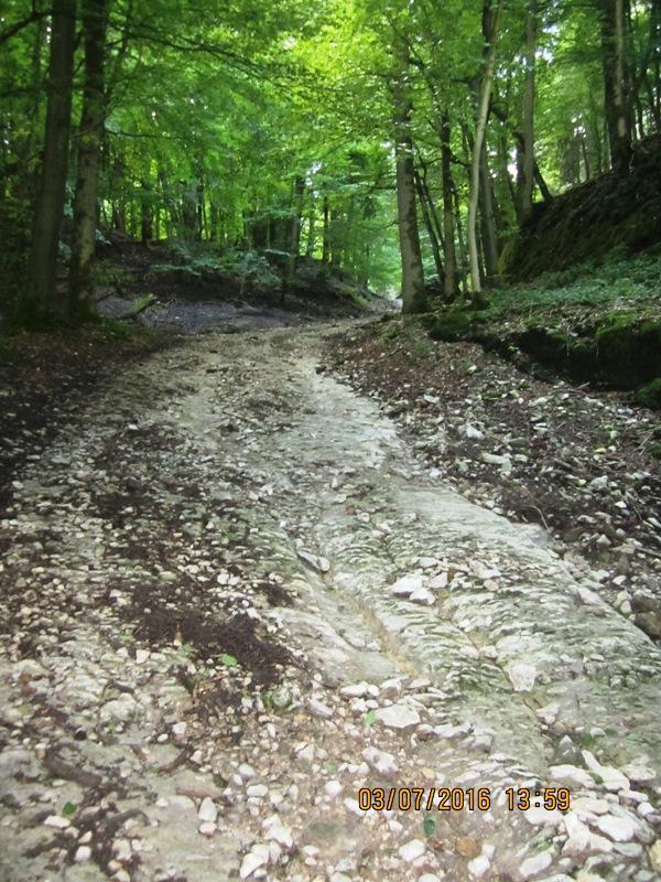 Hohlweg hinauf zum Winnfeld, anspruchsvoller Streckenabschnitt