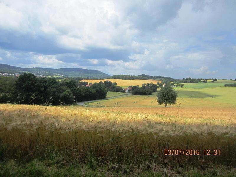 Ausblick vom Remmighauser Berg auf die Grotenburg mit dem Hermannsdenkmal