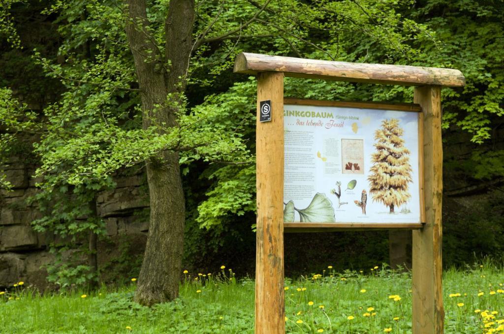 Informationstafel Arboretum