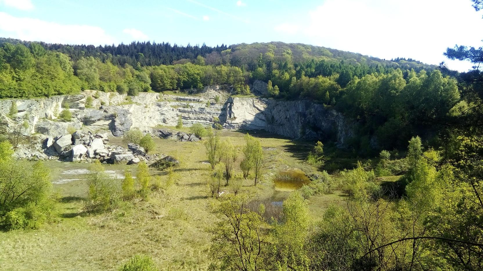 Kalksteinbruch Foerth