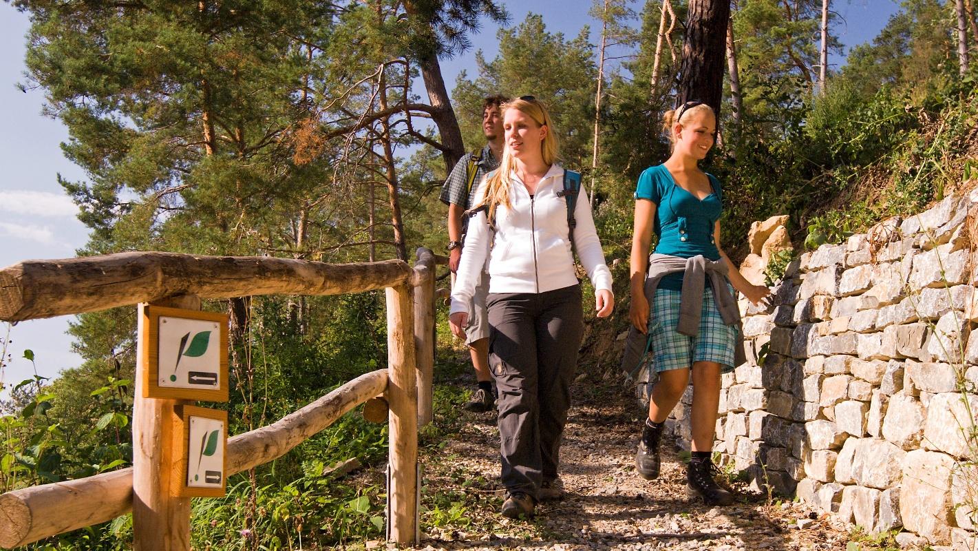 Wandergruppe auf dem Serpentinenpfad
