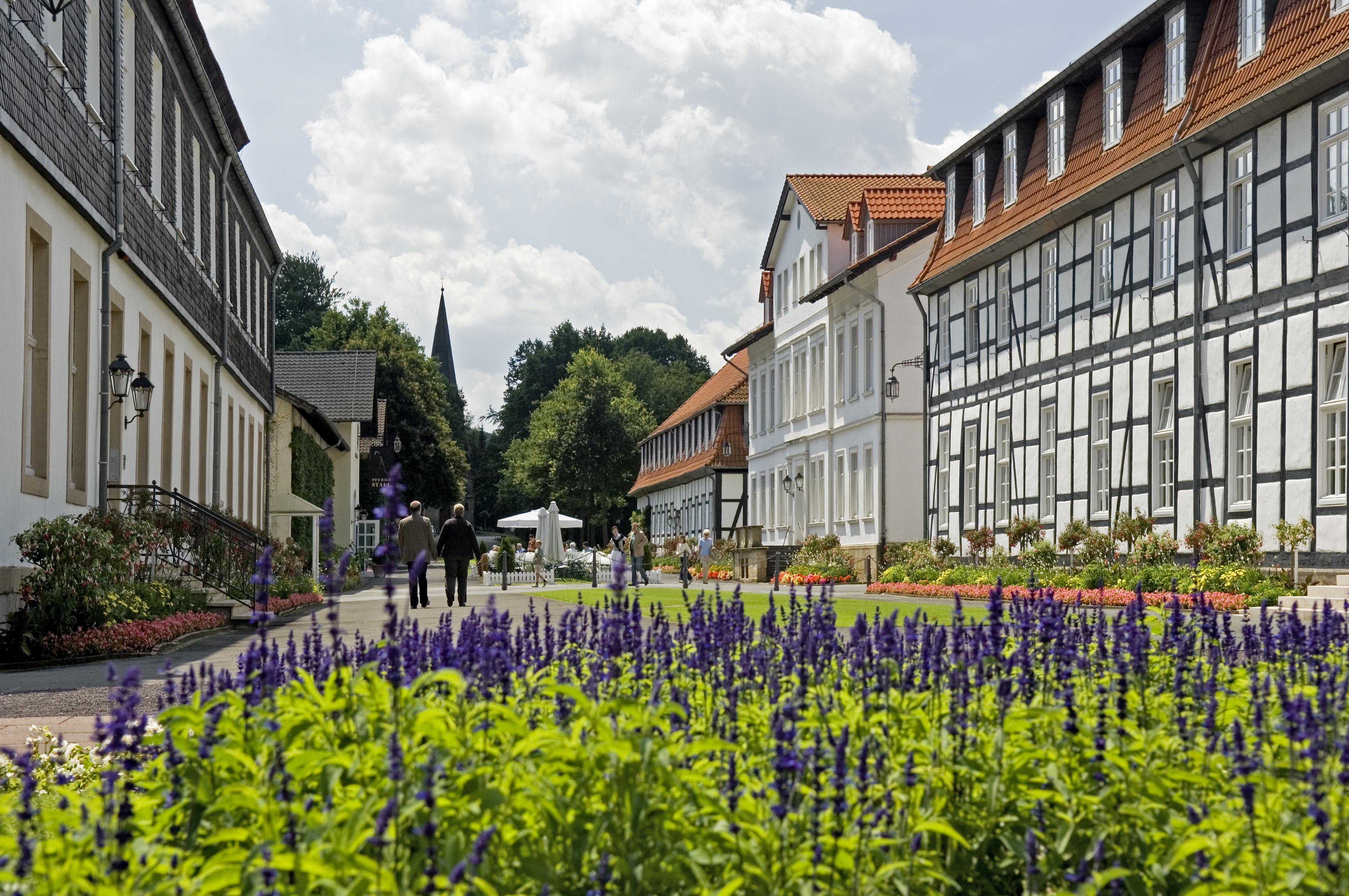 Bad Driburg - Gräflicher Park - Hauptachse